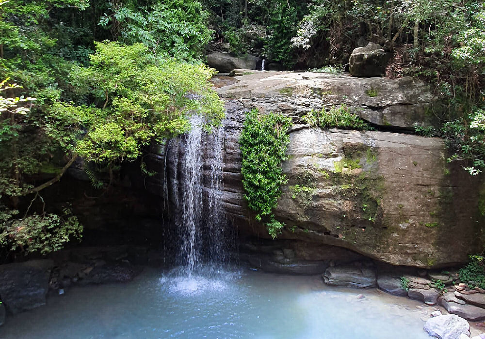 Buderim Falls at the Sunshine Coast Only a 15 minute drive from Alex Beach Cabins