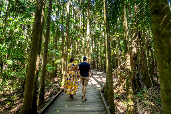 Rainforrest Walks